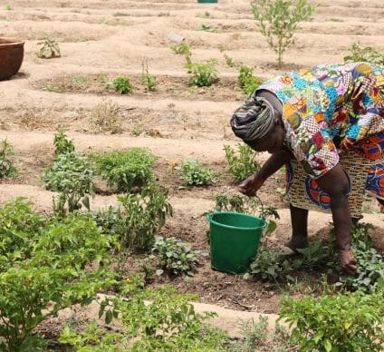 SENEGAL: the FAR project for women's resilience to climate change©BOULENGER Xavier/Shutterstock