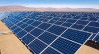 TUNISIE : le gouvernement lance un appel d'offres pour 70 MWc d'énergie solaire©abriendomundo/Shutterstock