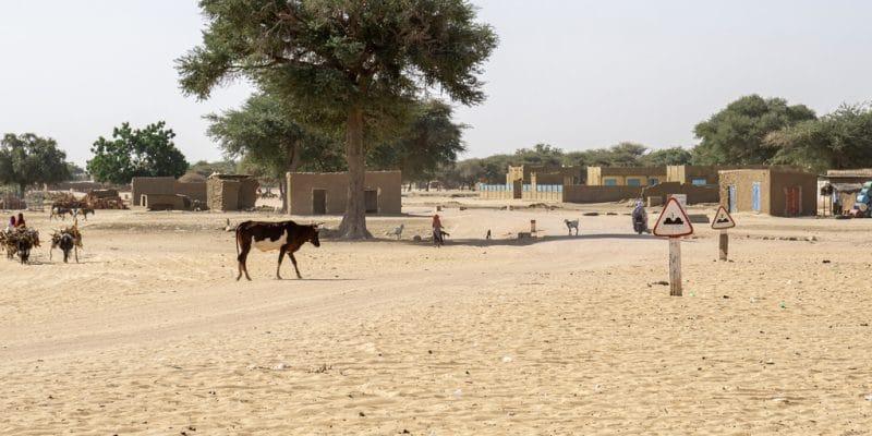 AFRICA: AfDB to mobilize US$25 billion for climate change adaptation©Torsten Pursche/Shutterstock