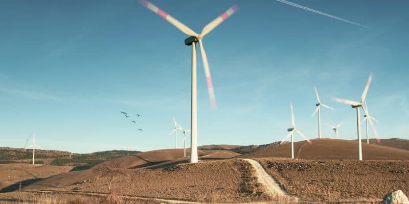 AFRIQUE : Enel et QIA s'allient pour exploiter les énergies renouvelables©Fabrizio Maffei/Shutterstock