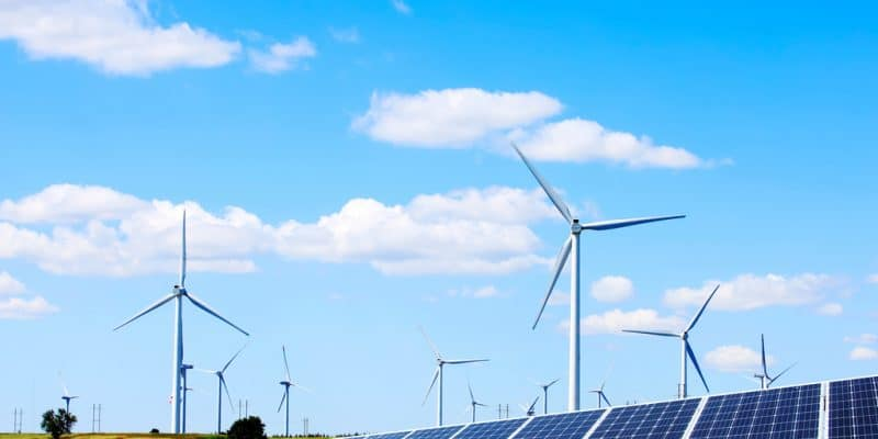 EGYPT: Copenhagen wants to increase its investment in renewable energy tenfold©zhengzaishuru/Shutterstock