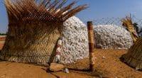 AFRIQUE : les vêtements en coton bio «CmiA» arrivent dans les magasins Lidl Suisse©Alexander BEE/Shutterstock