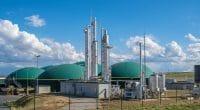 TOGO : Biothermica réalisera un projet de valorisation énergétique des déchets à Kloto© Ralf Geithe/Shutterstock