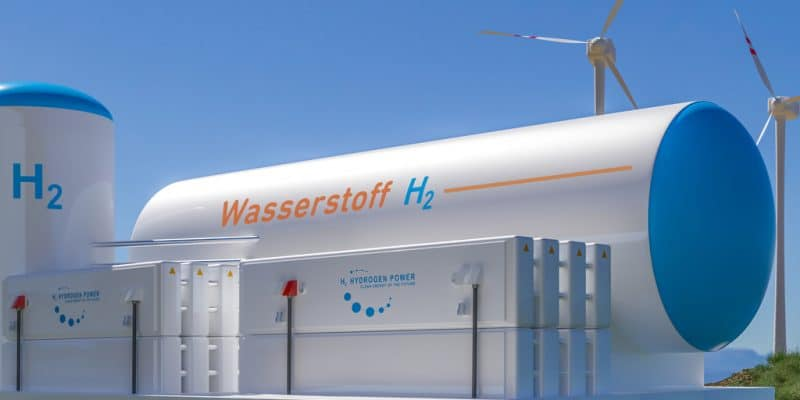 EGYPT: Germany's Siemens launches studies for a green hydrogen project©Alexander Kirch/Shutterstock