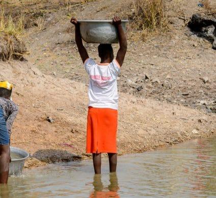 CONGO BASIN: Climate change threatens biodiversity©Anton_Ivanov/Shutterstock
