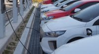 ZIMBABWE : DPA va installer 17 bornes de recharge de voitures électriques©sungsu han/Shutterstock