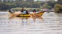 AFRIQUE DE L'EST : vers une exploitation durable des ressources du lac Victoria©Jen Watson/Shutterstock