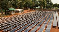 CAMEROUN : les centrales solaires de Maroua et Guider (25 MWc) exonérées d'impôts ©Sebastian Noethlichs/Shutterstock