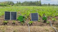 BURKINA FASO : Buy-Us Solar lance un projet d'irrigation à l'énergie solaire©Buy-Us Solar