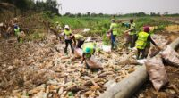 CAMEROON: SC2R collects 500 kg of plastic waste on the banks of the Wouri River©SC2R/Shutterstock