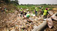 CAMEROUN : la SC2R collecte 500 kg de déchets plastiques les des berges du Wouri©SC2R/Shutterstock