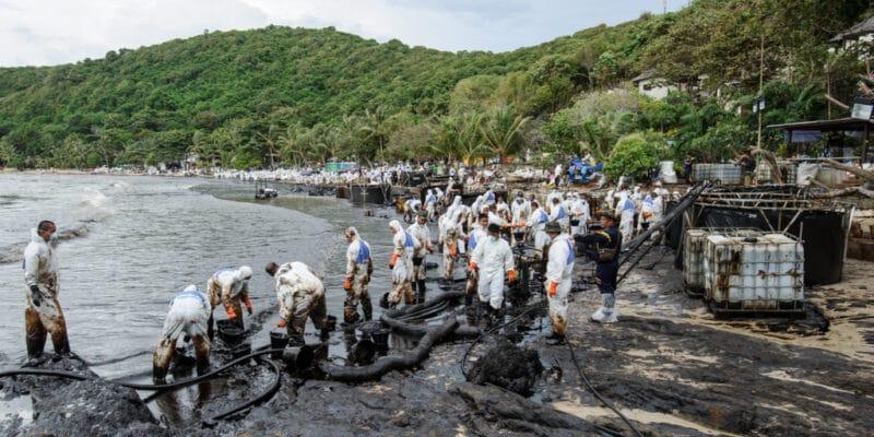 Nigeria: Shell condemned, companies face environmental responsibility© kajornyot wildlife photography/Shutterstock