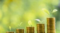 AFRIQUE DU SUD : la DBSA lance une obligation verte pour des projets climatiques© Freedom365day/Shutterstock