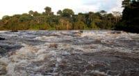 BASSIN DU CONGO : l'AFD et le FFEM financent l'adaptation au changement climatique© Nick Greaves/Shutterstock