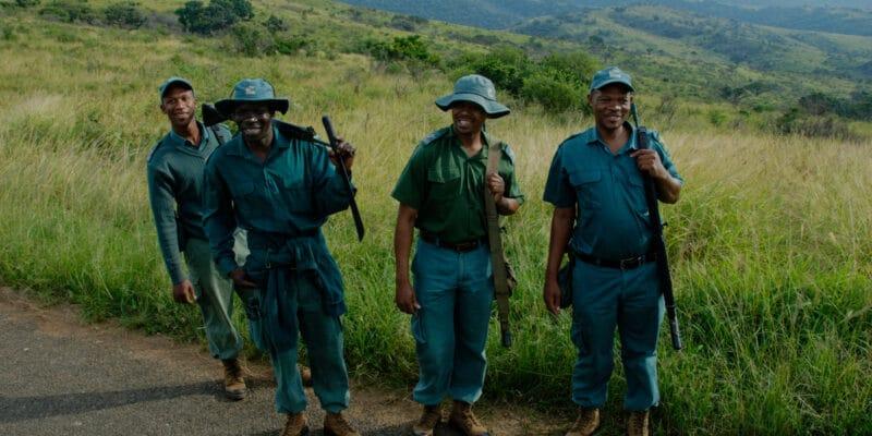 ZAMBIE : African park déploie son savoir-faire dans le parc national de Kafue©Kimmo Hagman/Shutterstock