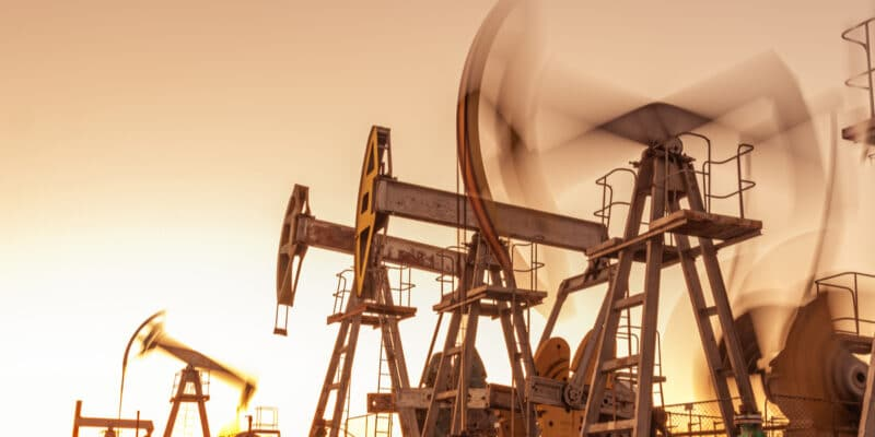 SOUTHERN SUDAN: an environmental audit of oil sites is announced ©ded pixto /Shutterstock