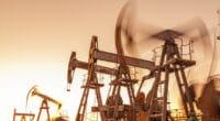 SOUDAN DU SUD : un audit environnemental des sites pétroliers est annoncé©ded pixto /Shutterstock