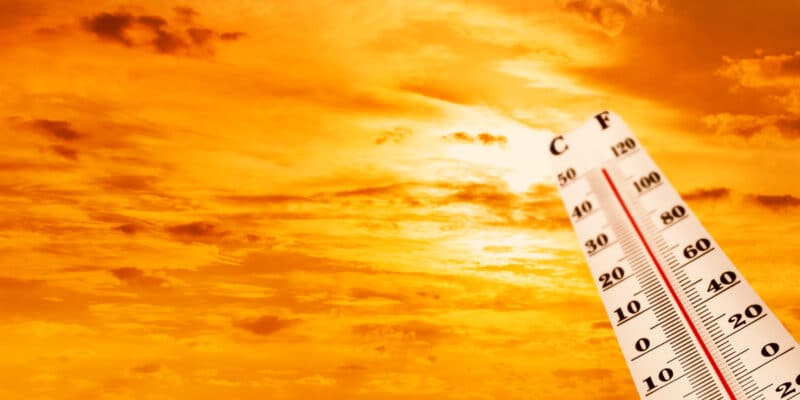 AFRIQUE: la BAD finance la lutte contre les changements climatiques via les CDN©Sergei25/Shutterstock
