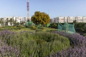 Réutilisation des eaux usées traitées : l'Afrique du Nord et SUEZ montrent l'exemple