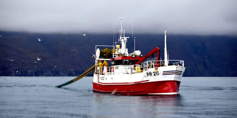AFRICA: Accused of overfishing, FV Margiris returns to service off Mauritania ©Nicola Zink/Shutterstock