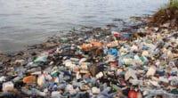 OUGANDA : Coca-Cola soutient de nouveau la collecte des déchets plastiques© Rich Carey/Shutterstock