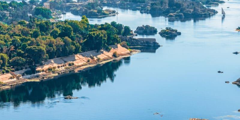 ÉGYPTE : le pays renforce sa législation sur l'eau et veut protéger la biodiversité© leshiy985/Shutterstock