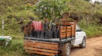 UGANDA: 2021 Roots aims to plant 40 million trees ©PlataRoncallo/Shutterstock