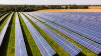 ZAMBIA: GreenCo Power Launches Tender for 40 MWp of Solar Power © Piotr Grabalski/Shutterstock