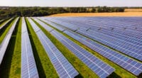 ZAMBIE : GreenCo Power lance un appel d'offres pour 40 MWc d'énergie solaire © Piotr Grabalski/Shutterstock