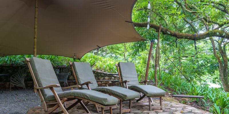 GABON : le pays lance un projet d'écotourisme pour rentabiliser sa riche biodiversité©OlegD/Shutterstock