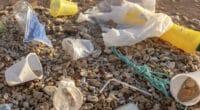 EGYPT: JICA allocates $3.57 million for single-use plastics management©Andriy Nekrasov/Shutterstock
