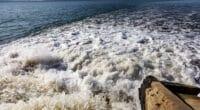 Botswana-Namibie : les deux pays s'engagent à nouveau pour un pacte de l'eau©A_Lesik/Shutterstock
