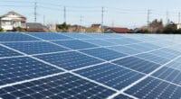 MOZAMBIQUE : Ncondezi Energy relance son projet d'off-grid solaire de 400 kWc © leungchopan/Shutterstock