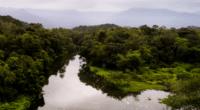 AFRIQUE : la gestion de l'eau, un enjeu clé pour la biodiversité ©Gustavo Frazao/Shutterstock