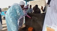 CHAD: a drinking water supply improves service in the town of Bol©Chadian Ministry of Hydraulics