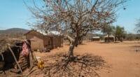 KENYA : Nairobi dépensera 8 Md$ pour l'adaptation au changement climatique en 10 ans © scarp577/Shutterstock