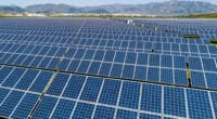 MALI: The government gives the green light for two 83 MWp solar PV plants © Petar Petrov/Shutterstock
