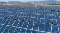 MALI : le gouvernement donne son feu vert pour deux centrales solaires PV de 83 MWc © Petar Petrov/Shutterstock