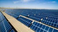 ÉGYPTE : la NREA approuve la construction d'une centrale solaire de 50 MWc à Zaafarana© zhu difeng/Shutterstock