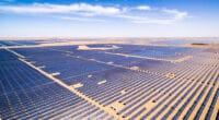 BOTSWANA-NAMIBIE : un accord avec des investisseurs pour un complexe solaire de 5 GWc© zhangyang13576997233/Shutterstock