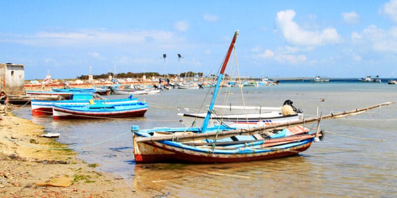 TUNISIA: WWF seeks consultant to survey pollution in Kerkennah©Eric Valenne geostory/Shutterstock