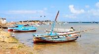 TUNISIE : WWF recherche un consultant pour constater la pollution à Kerkennah©Eric Valenne geostory/Shutterstock