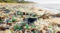 NIGERIA : la sensibilisation, la clé pour réduire la pollution de Lighthouse beach?©DigArt/Shutterstock