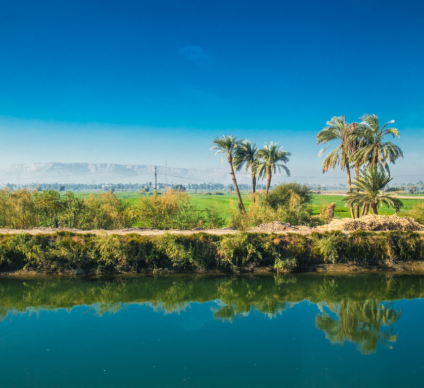 EGYPT: Irrigation water will soon be charged©Aleksandar Todorovic/Shutterstock
