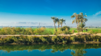 ÉGYPTE : l'eau d'irrigation sera bientôt payantes©Aleksandar Todorovic/Shutterstock