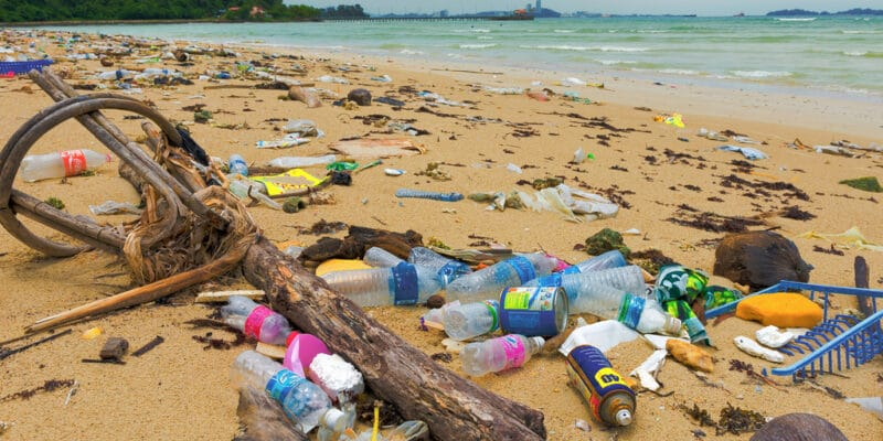 AFRICA: FAO and IMO launch GloLitter programme to clean up oceans©Arnain/Shutterstock