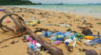 AFRIQUE : la FAO et l'OMI lancent le programme GloLitter pour dépolluer les océans©Arnain/Shutterstock
