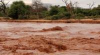 OUGANDA : retenir les eaux pluviales pour réduire les inondations à Teso©hecke61/Shutterstock