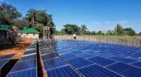 ZAMBABWE : les producteurs d'énergie solaire exonérés d'impôts pendant 5 ans © Sebastian Noethlichs/ Shutterstock