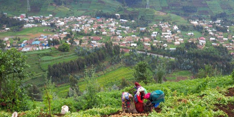 BURUNDI: GEF finances the restoration of agricultural land in Kayanza© fivepointsix/Shutterstock